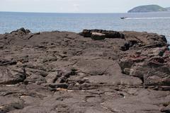 lava landscape - stock photo