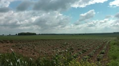 Pan across the battlefield at Wancourt Ridge, WW1 Battle of Arras 1917 Stock Footage