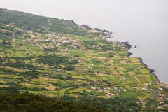 field, pico island, azores - stock photo