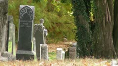 Tombstones in a Graveyard Stock Footage
