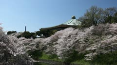 Imperial Palace Area, Beautiful Cherry Blossom, Chidorigafuchi in Tokyo, Japan Stock Footage