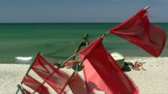 Beautiful Baltic Sea Beach on Darss Peninsula - Northern Germany Stock Footage