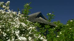 Old Thatched-Roof House with Flowers in Mecklenburg - Baltic Sea, Germany Stock Footage