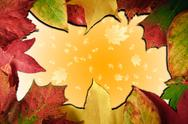 Stock Illustration of vibrant autumn fall season leaves on faded gradient background