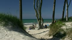 Beautiful Beach on Darss Peninsula - Baltic Sea, Northern Germany Stock Footage