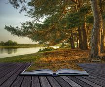 Luova käsite maaginen fantasiatyyli metsä tulossa ulos sivujen taikaa Piirros
