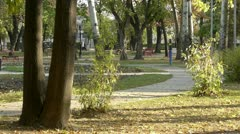Middle-aged man running in park - stock footage