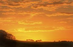 Stunning sunset sky with silhouette landscape horizon Stock Photos