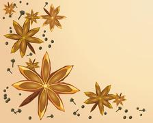 Star anise Stock Illustration