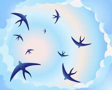 Swallow circle Stock Illustration