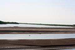 riverside grass blowing on syr darya river, kazakhstan - stock photo