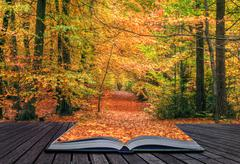 Creative concept idea of beautiful autumn fall forest scene in pages of magic Stock Photos