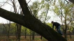 Man climbing on a huge tree Stock Footage