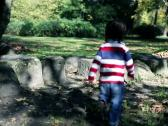 Stock Video Footage of Young boy in autumn park, steadycam, slow motion