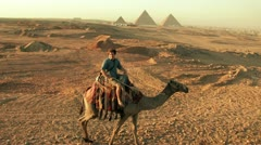 Tourist Rides Camel towards Pyramid Stock Footage