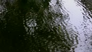 Stock Video Footage of Fishing bobber in a rippled water