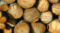 A pile of sawn up logs Stock Footage