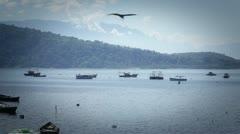 Bahia, landscape. - stock footage
