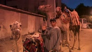 Camel Guide in Cairo Stock Footage