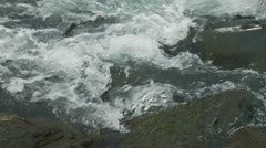 Humpback Salmon Fighting Upstream Rapids Whitewater Stock Footage