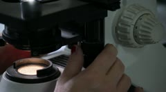 Microscope 25 fps 02 Stock Footage