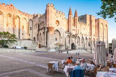 Avignon pope palace, france. Stock Photos