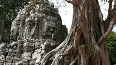 Close shot of Banyan Tree and Temple entry at Ta Som Stock Footage