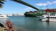 Container Ship Passes Under Bridge Stock Footage