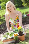 Beautiful blond woman gardening planting flowers Stock Photos