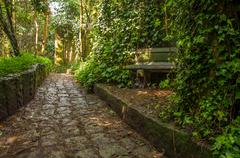 Stone Path Through a Forest - stock photo