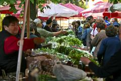 Sellers and buyers on the greenmarket - stock photo