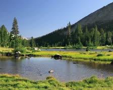 Yosemite National Park 2 Stock Footage