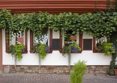Stock Photo of house facade in miltenberg