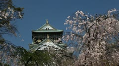 Sakura Cherry Tree Detail Close Up Osaka Castle Buildin Japanese Landmark Spring Stock Footage