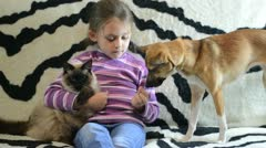 Six year old girl plays with pets Stock Footage