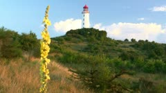 Lighthouse with Hollyhock on Hiddensee Island - Baltic Sea,Germany Stock Footage