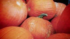 Pumpkin Background - stock footage