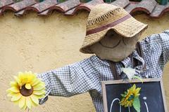 Scarecrow - stock photo