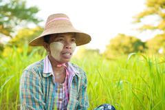 Mature myanmar farmer Stock Photos