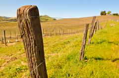 Close-up of a barbed wire fence post - vineyard Stock Photos