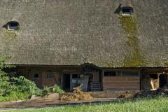 traditional black forest farmstead - stock photo