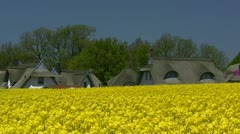 Beautiful Canola Field With Houses in Mecklenburg - Northern Germany Stock Footage