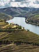 Stock Photo of douro river valley