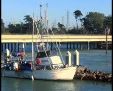 Fishing boat - PAL Stock Footage