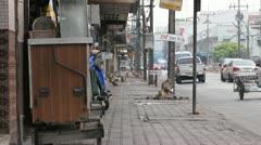 City street overrun with monkeys Stock Footage