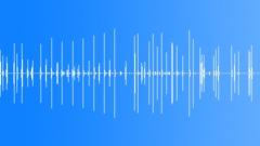 Rachet clicks Sound Effect