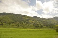 Rice Paddy in Nepal, Asia - stock photo