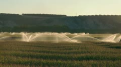 Irrigation systems on sunset. Corn plantation Stock Footage