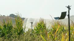 Watering the corn plantation. Irrigation close up - stock footage