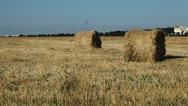 Stock Video Footage of Wheat Field Harvest, Bale of Wheat Straw, Large Fields of Golden Wheat
